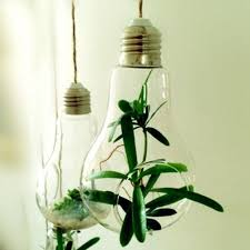 glass bulb lamp water plant hanging vase hydroponic container home