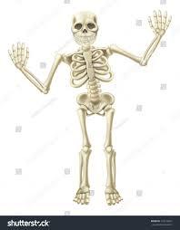 drawing cute cartoon waving skeleton character stock vector