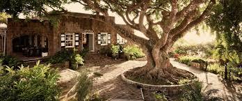 montpelier plantation u0026 beach luxury hotel in st kitts u0026 nevis