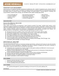 Areas Of Expertise Resume Examples Sle Of Key Skills In Resume 28 Images Sales Assistant