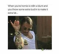 Roll Meme - roll a fat blunt throw in extra make extra fat funny weed memes