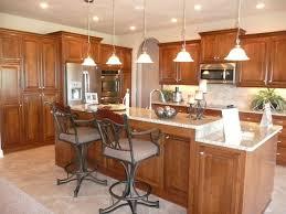 elegant kitchen cabinets kitchen design ideas elegant kitchen designs and design pictures