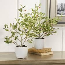 small faux olive tree in white planter u0026 reviews joss u0026 main