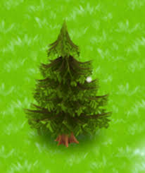 image small pine tree png hay day wiki fandom powered by wikia