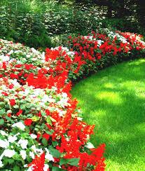 Backyard Flower Garden Ideas by Round Flower Bed With Tree Beautiful Design Ideas Ornaments