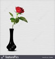 Long Stem Rose Vase Red Long Stem Rose Picture