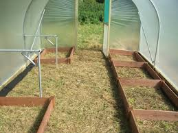 polytunnel layout with raised beds and staging supports