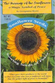 sunflower seed packets an autobiography chapter 14 sunflower suite
