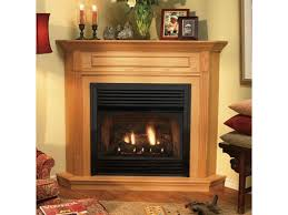 fireplaces amusing natural gas fireplace insert with er ventless design 23
