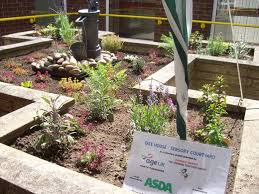 How To Design A Flower Bed How To Design A Sensory Garden For The Blind Or Visually Impaired