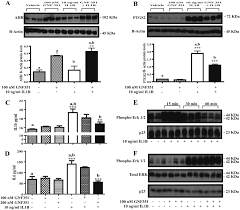 aryl hydrocarbon receptor antagonism mitigates cytokine mediated