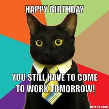 Sophisticated Cat Meme Generator - business cat happy birthday happy birthday you still have to
