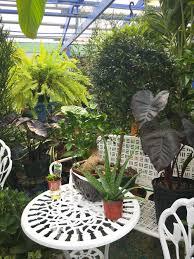 the greenhouses u2014 whispering pine garden center u0026 florist