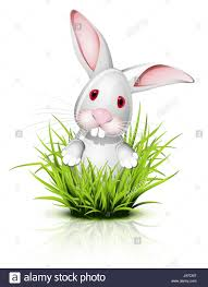 rabbit teeth cut out stock images u0026 pictures alamy