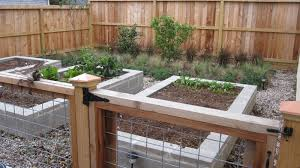 urban garden with loads of room for growing herbs and veggies