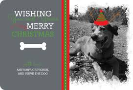 funny christmas card wording ideas u2013 happy holidays
