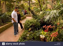 Balboa Park Botanical Gardens by Botanical Building Gardens Balboa Park San Diego California