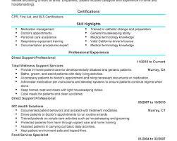 Pilot Resume Examples by Pilot Resume Examples Bill Lading Template Wordsample Resume