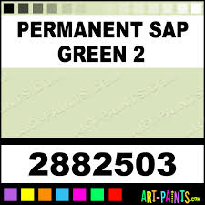 permanent sap green 2 artists pastel paints 2882503 permanent