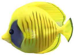 edit and free download yellow fish transparent picture