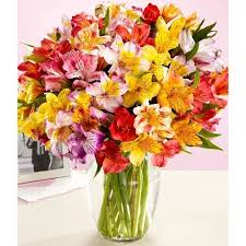 flower delivery free shipping vases design ideas free flower delivery free shipping on flowers