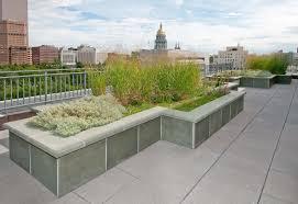 denver public library green roof lime green design lime green design