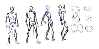 Male Spider Anatomy Basic Male Forms By Thesadaan Sketches And Anatomy Pinterest