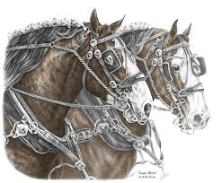 team clydesdale draft horse print color tinted drawing