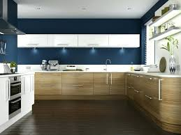 painting ideas for kitchens white kitchen cabinets blue walls colorviewfinder co