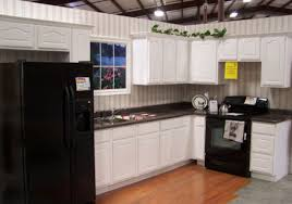 Cheap Kitchen Cabinets Houston Deservingness Kitchen Cabinet Storage Options Tags Kitchen
