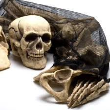 bag of bones decorations halloween costume ideas pinterest