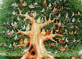 bird trees solidaria garden