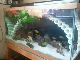 homemade fish tank decorations home design ideas