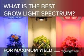 Full Spectrum Led Grow Lights Migro Full Spectrum Led Grow Light High Efficiency Led Grow