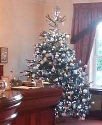 Decorated Christmas Tree Hire by Christmas Trees