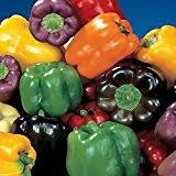 amazon com sweet pickle pepper 20 seeds the christmas tree