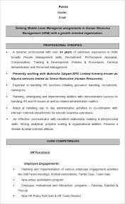 Hr Recruiter Job Description For Resume by Hr Resume It Project Manager Resume Objective Statement Project