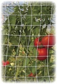 Garden Trellis Netting Trellis Netting 7