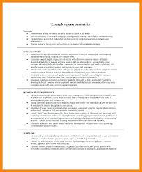 professional summary resume summary for resumes executive summary resume sle writing
