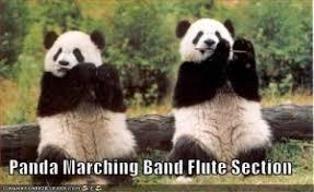 Marching Band Memes - 25 awesomest band memes