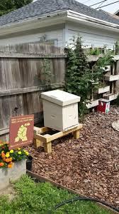 Backyard Beehive Host A Hive