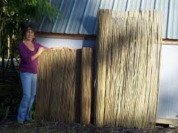 bamboo reed fencing design and ideas of house