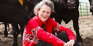 temple grandin answers questions from the mighty u0027s autism