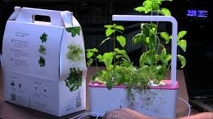 click and grow smart herb garden review youtube
