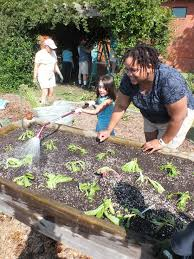 whole foods helps winter park garden grow port city daily
