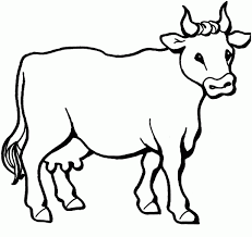 cow free printable coloring pages