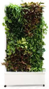 Vertical Gardens Miami - 313 best green walls plug u0026 play units images on pinterest