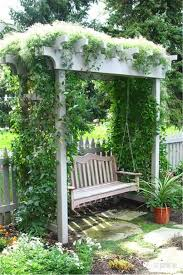 backyard pergola with silver lace vine plants growing silver
