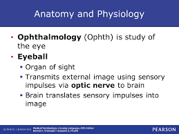Eye Anatomy And Physiology 13 Special Senses The Eye And The Ear Ppt Download