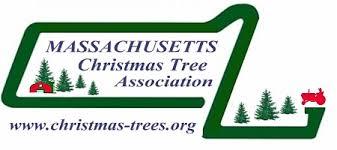 tree wholesalers massachusetts tree association